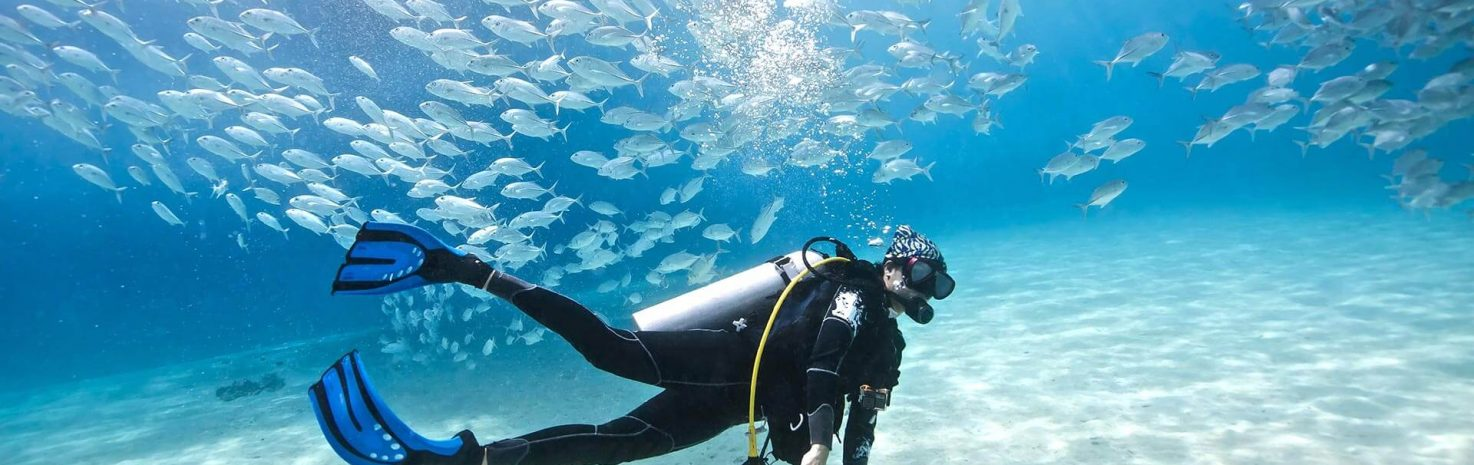 Ocean Legends International diving Academy Oahu with Spearfishing
