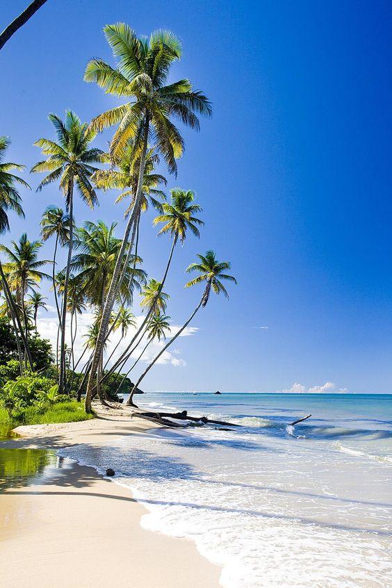 Beautiful Trinidad Beach Adventugo.com
