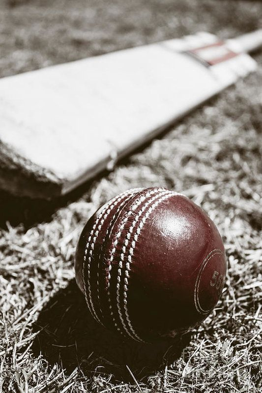 Cricket Match Trinidad and Tobago Adventugo.com