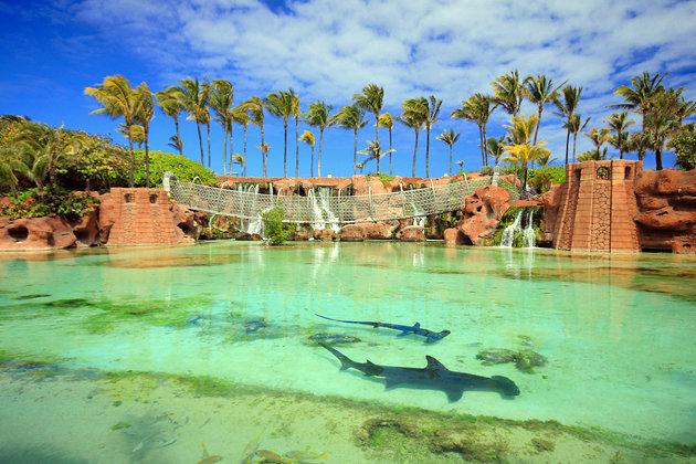 Paradise island Bahamas Adventugo.com