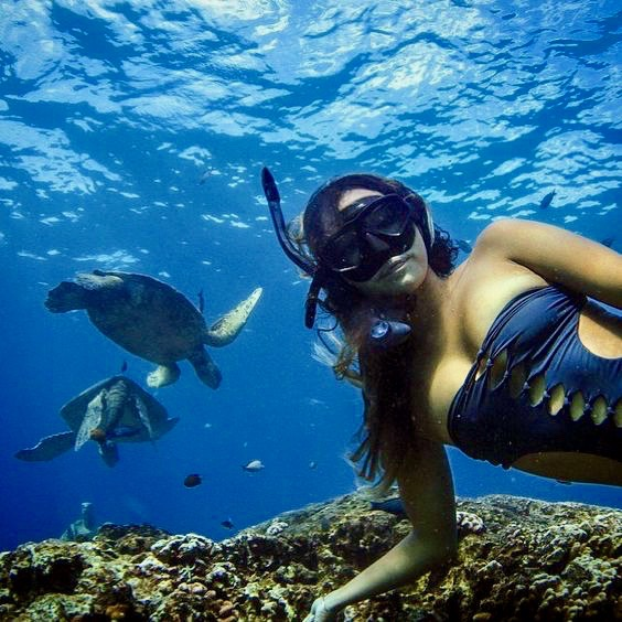 Ultimate snorkelling Guide