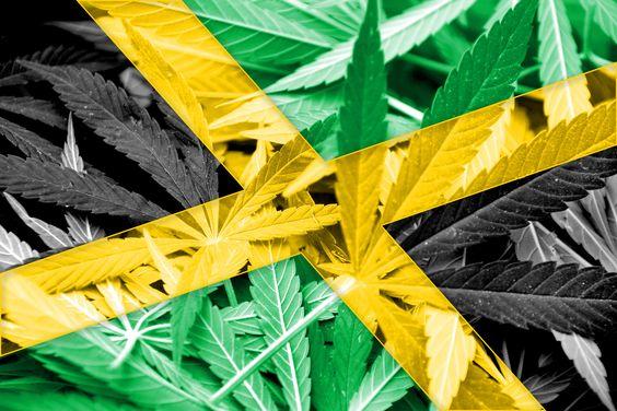 Jamaica-Weed-Ganja