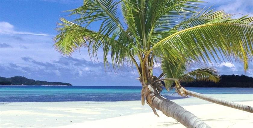 Tavewa-Island-Fiji
