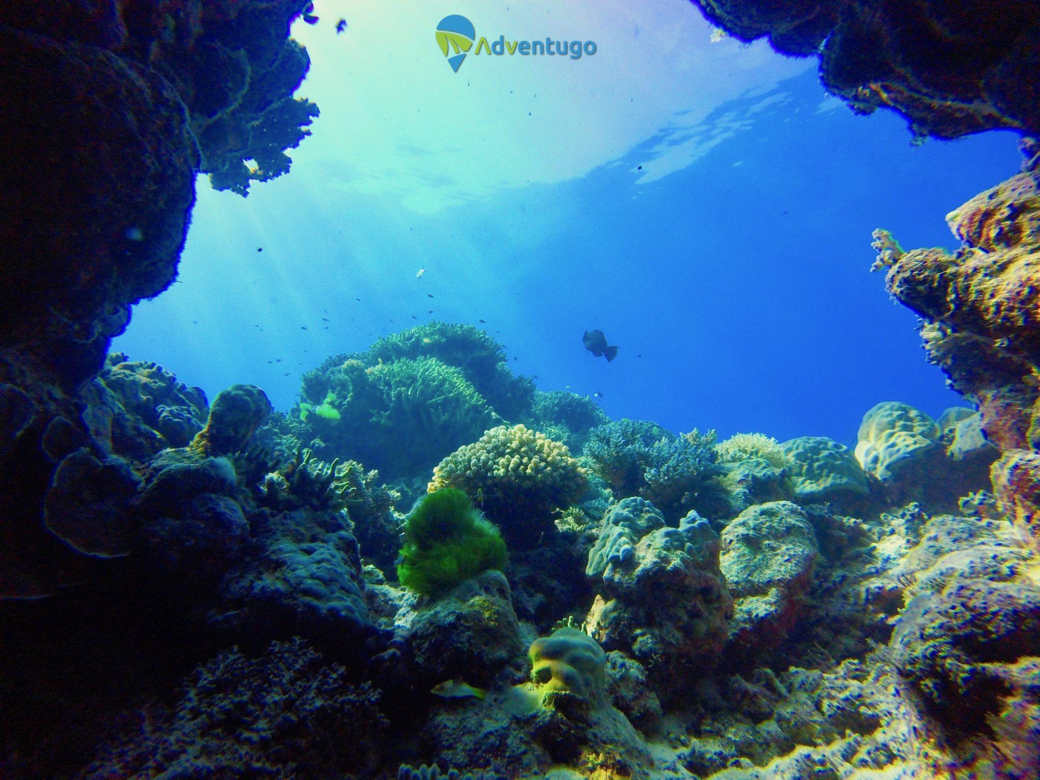 El Nido Scuba Diving, Philippines Scuba Diving