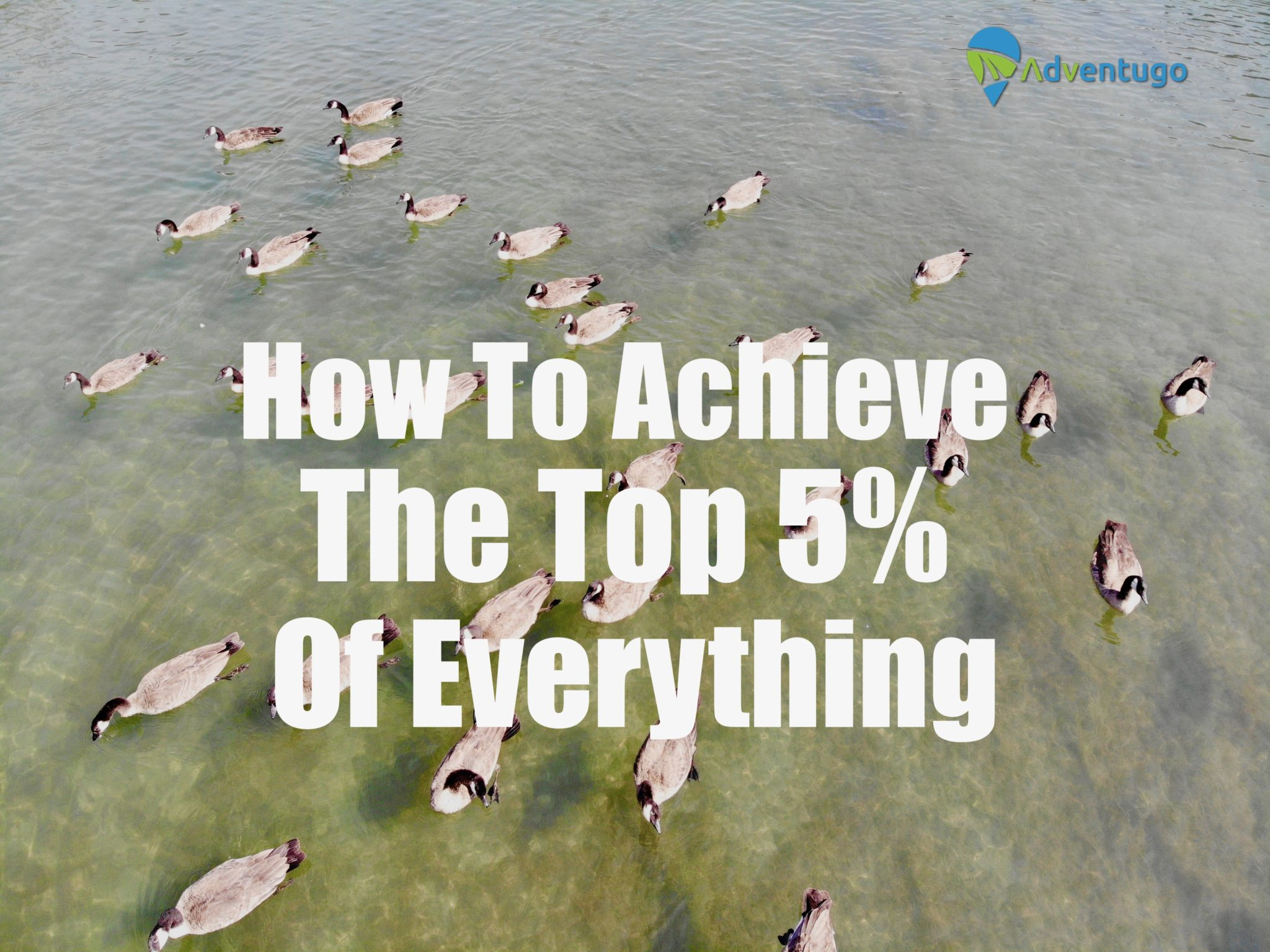 How to achieve the top 5% of Everything